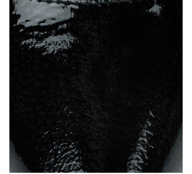 Escarpins femme - PATRICIA MILLER - Noir verni