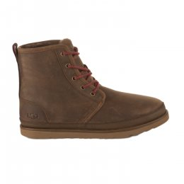Chaussures femme - UGG - Marron
